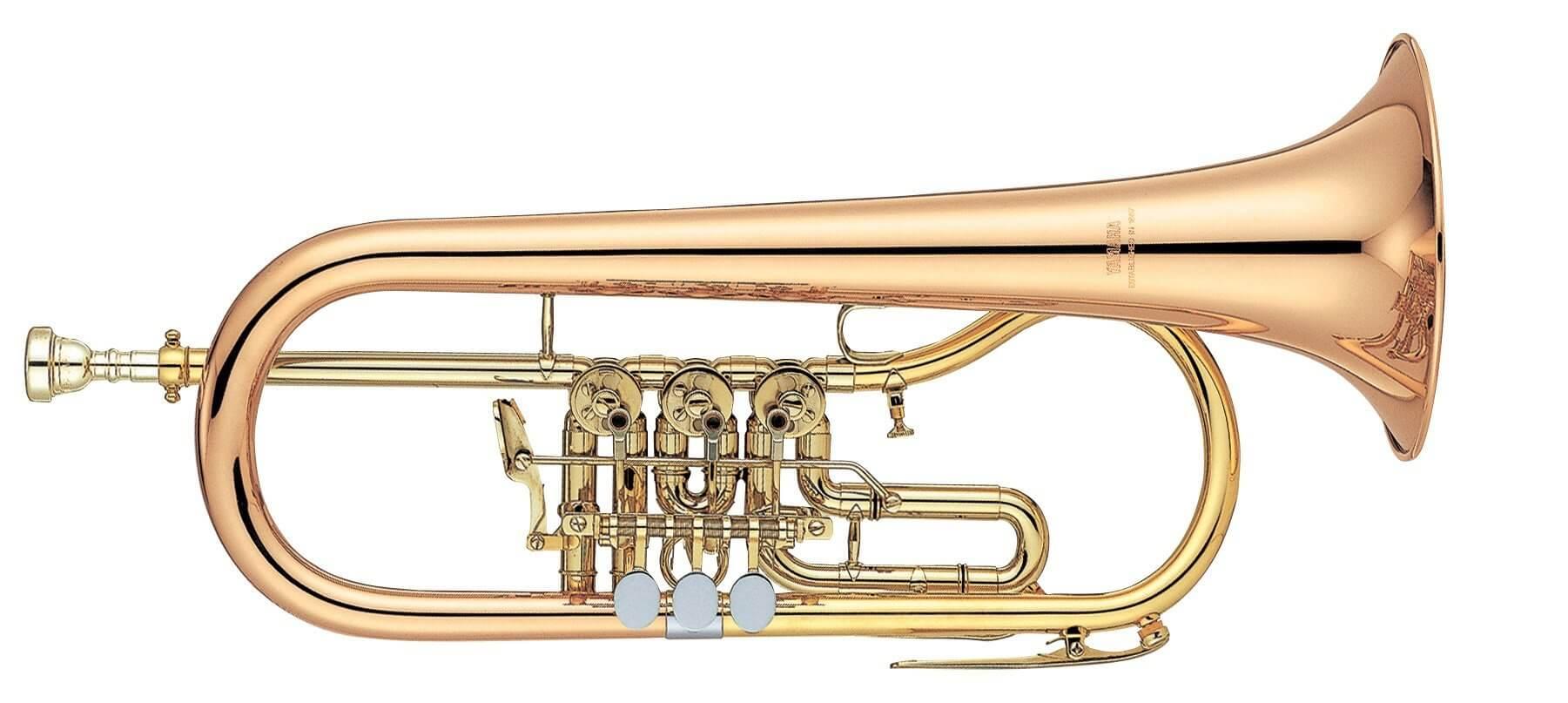 Fliscorno De Cilindros Yamaha YFH-436G Lacado