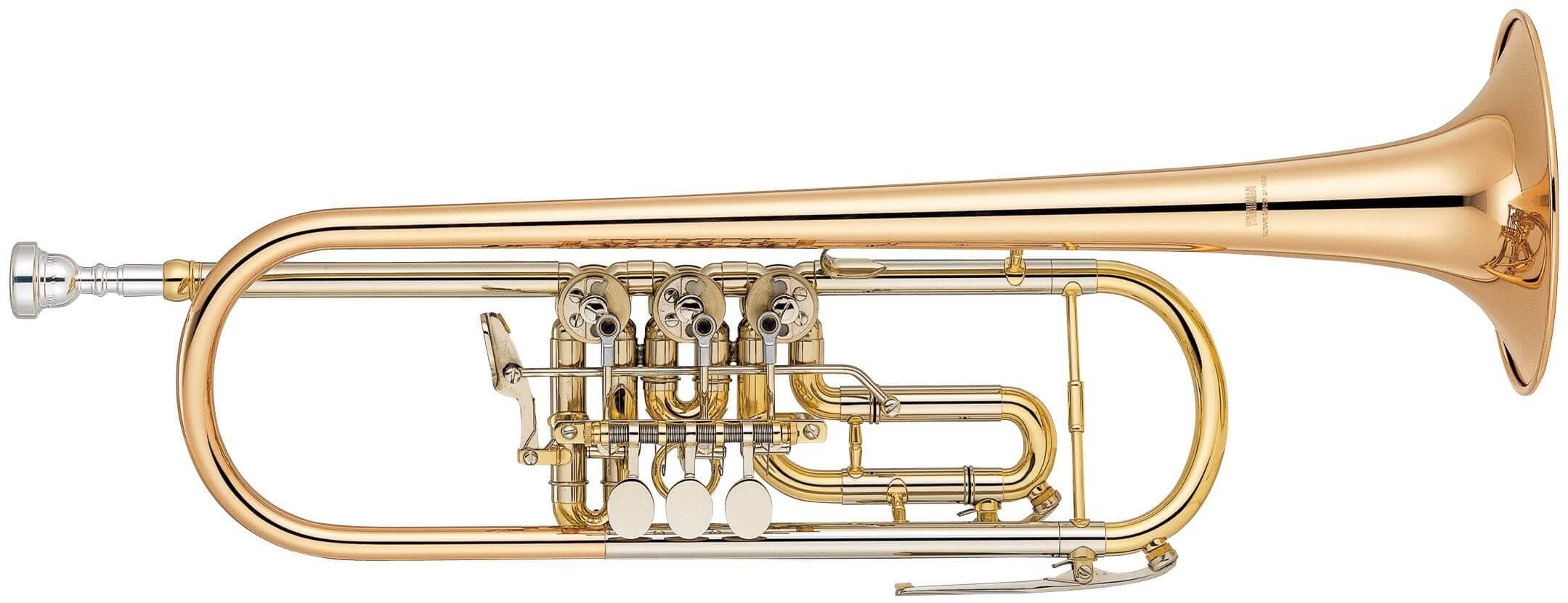Trompeta De Cilindros Yamaha Ytr-436G Lacada