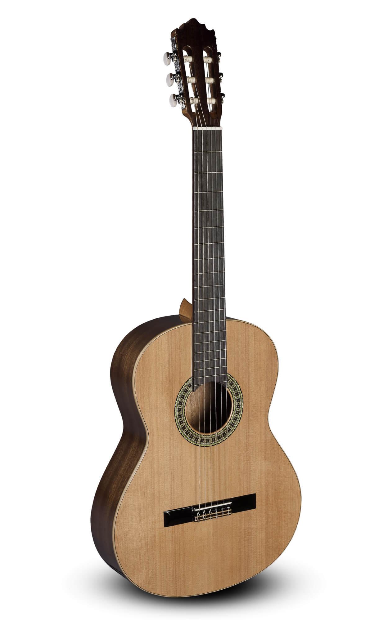 Guitarra Clasica Paco Castillo 201 3/4 (1C)