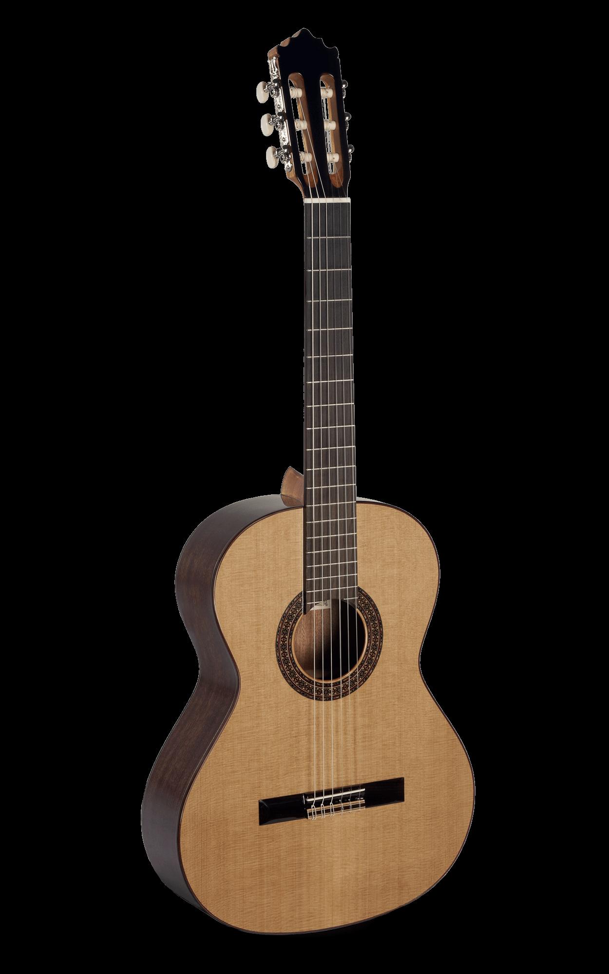 Guitarra Clasica Paco Castillo 202 (3C)