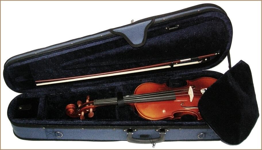 Viola Hosslam E 16,5