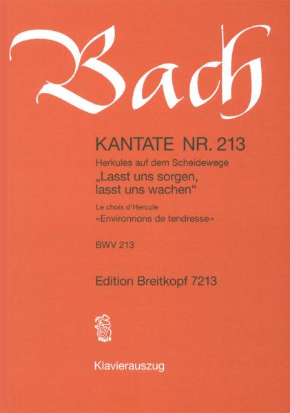 Lasst uns sorgen, lasst uns wachen BWV 213